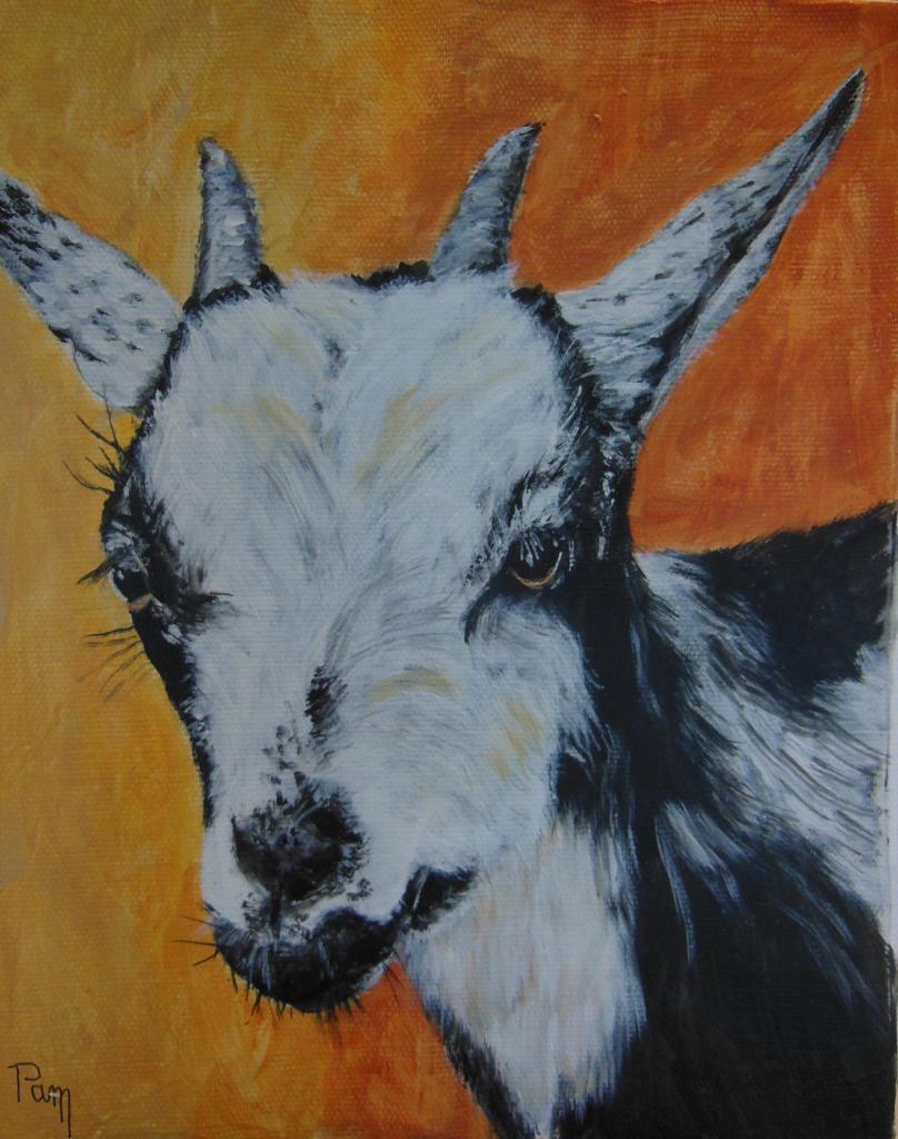 chèvre 27x22 acrylique