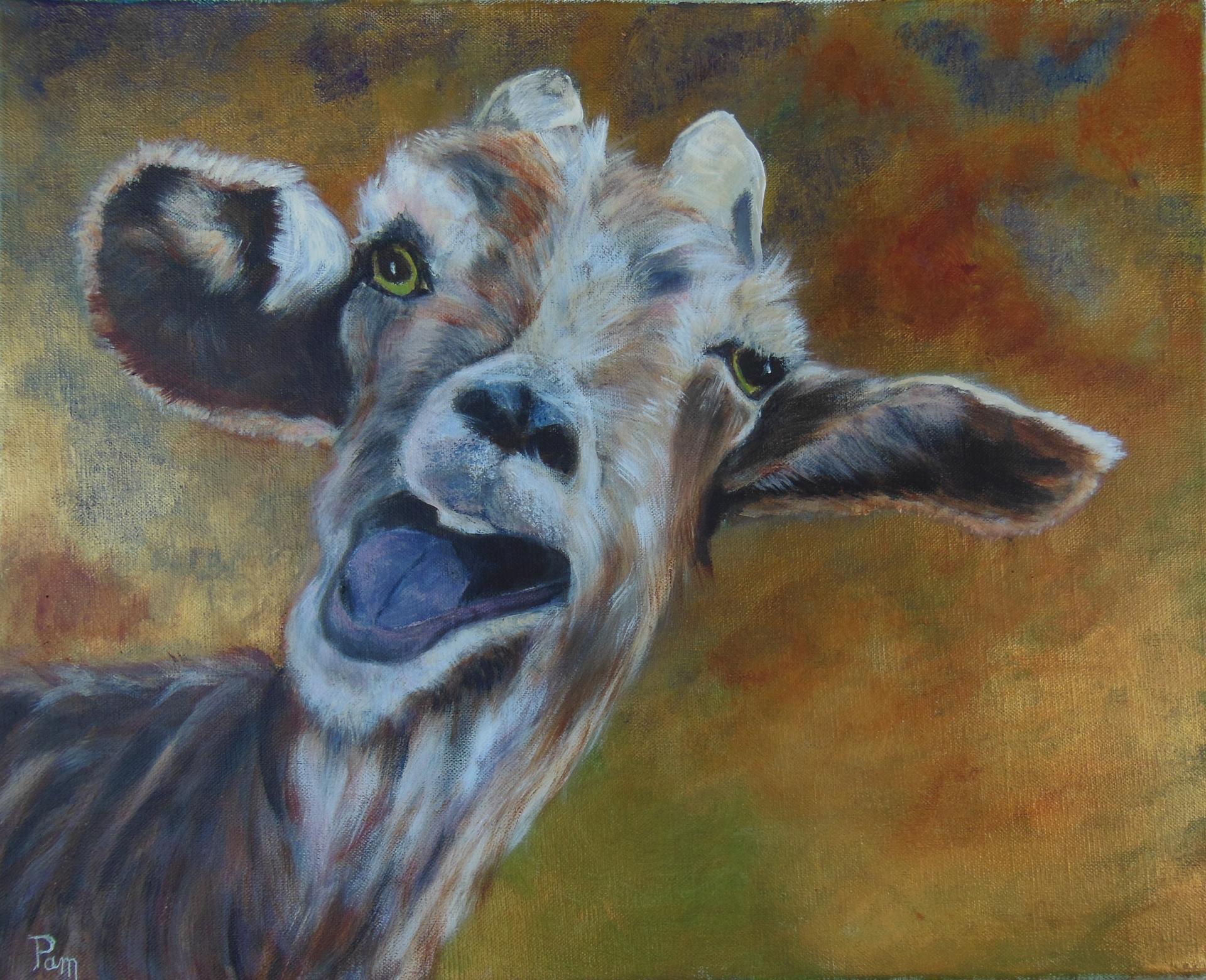 Chèvre qui rit 38x46 acrylique