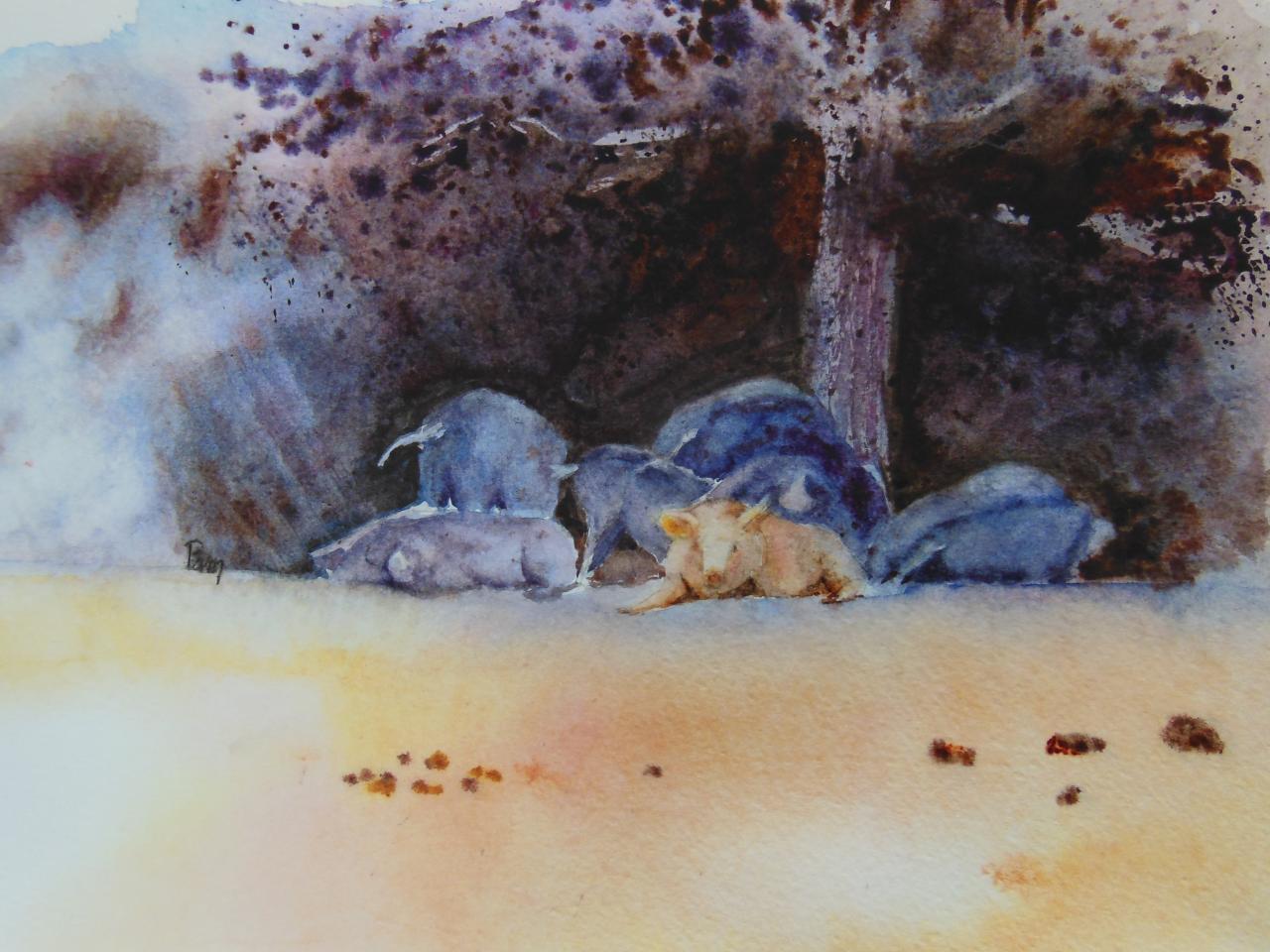 Sous l'ombrage 30 x 40 aquarelle